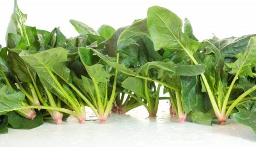 ほうれんそうと小松菜の違い|似ていても全然違う!見分け方や栄養などをご紹介
