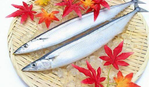 秋刀魚(サンマ)が腐るとどうなる?ぬるぬる・ぶよぶよ|賞味期限と保存方法・見分け方
