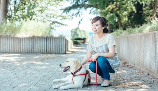 犬に山芋を食べさせても大丈夫?与える際の注意点は?アレルギーは大丈夫?