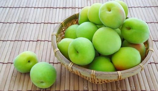 越の梅の特徴・旬の時期まとめ 加工にも使いやすい中粒の梅
