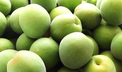 青軸の特徴・旬の時期まとめ 加工にも使いやすい中粒の梅