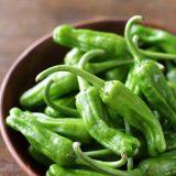 ししとうの作り置きレシピ6選|冷凍すれば保存食にもなる!