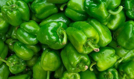 ししとうとピーマンの違いは何?味や栄養はほぼ同じ?辛いのはどっち?