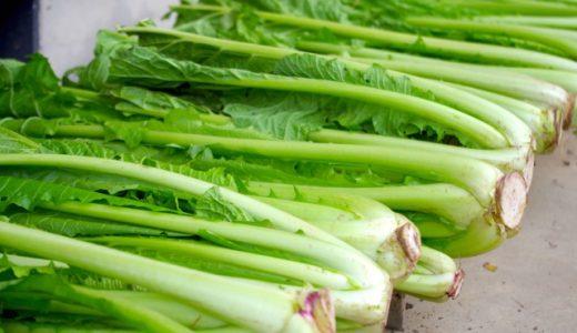 野沢菜と小松菜の違いは?漬け方や保存方法・代用できる野菜も