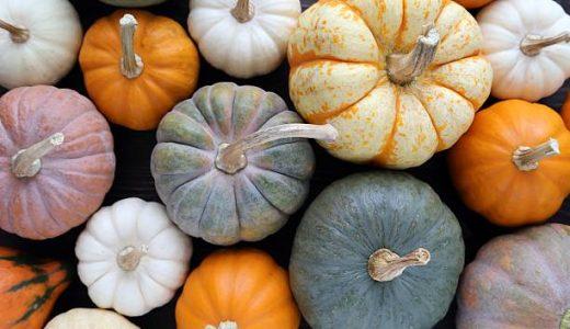 かぼちゃの冷凍保存期間|長持ち・ホクホク保存方法|スカスカになる?
