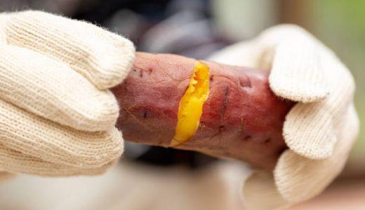 焼き芋の温め直し方は?魚焼きグリルもOK!パサパサ感を復活させる方法
