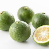 かぼすやゆずの違いって何?栄養や違い、使い方や似た柑橘類もご紹介